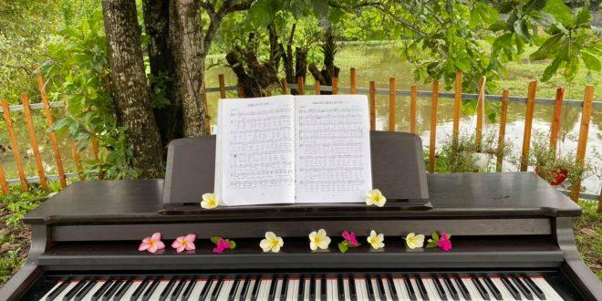 chuẩn bị gì khi học piano